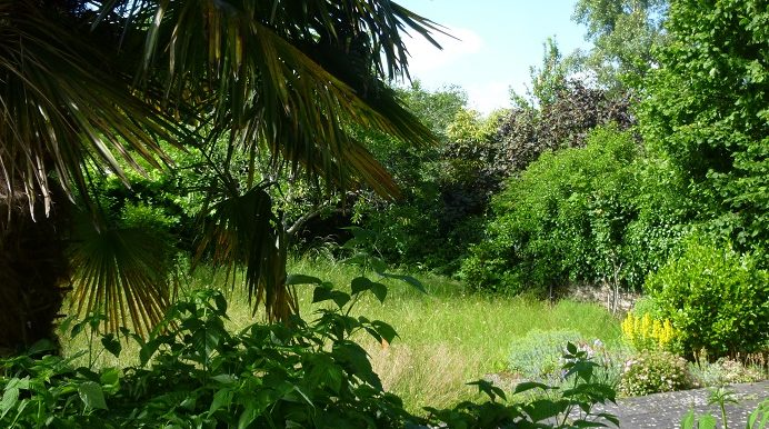 jardin vertic